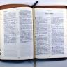 БИБЛИЯ 055 ZTI Коричневая, с деревом, парал. места, золотой срез, индексы, словарь /145x205/