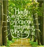 Магнит 8х11: Научи меня Господи пути Твоему