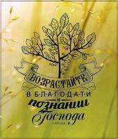 Магнит 8х11: Возрастайте в благодати и познании Господа