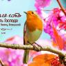 """БИБЛЕЙСКИЙ ЦИТАТНИК ДЛЯ ЖЕНЩИН """"Вера, надежда, любовь"""""""