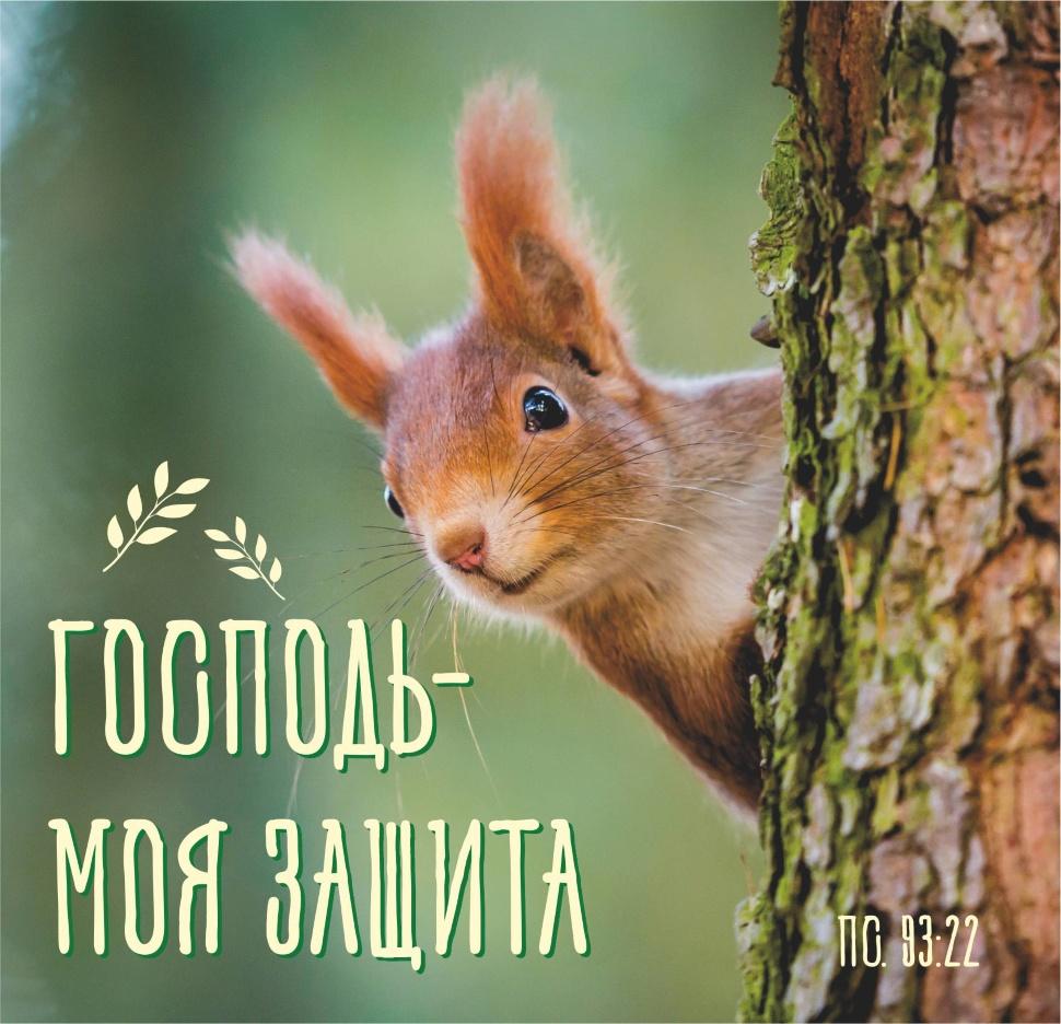 """ДЕТСКИЙ БИБЛЕЙСКИЙ ЦИТАТНИК """"Забавные животные"""""""
