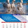 Перекидной календарь 2020: Достигая максимума