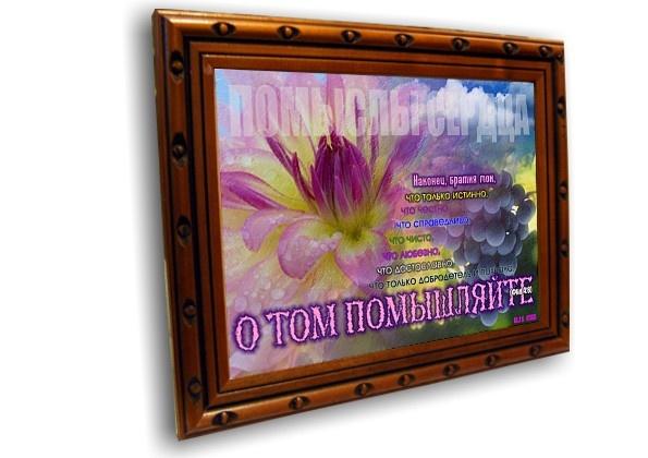 Постер: ПОМЫСЛЫ СЕРДЦА