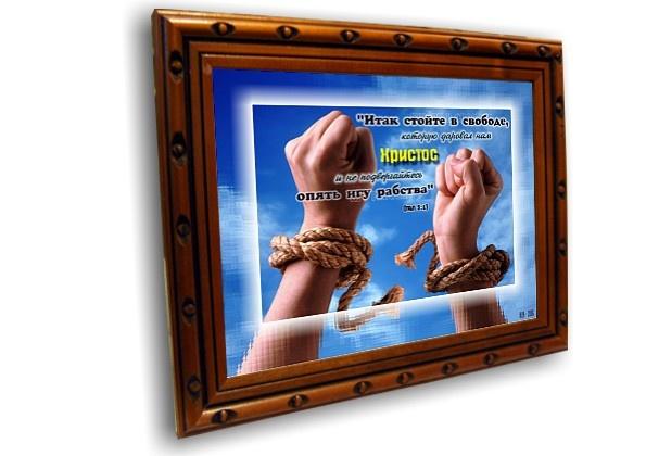 Постер: СТОЙТЕ В СВОБОДЕ №1