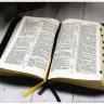 БИБЛИЯ 057 ZTI (B13) Светло-коричневый, классика, кожа, молния, индексы, золотистый обрез, две закладки /120х190/