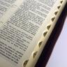 БИБЛИЯ 075 ZTI Коричневая, орнамент, рамка, золотой срез, индексы, молния, закладка /180х250/