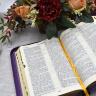 БИБЛИЯ 077 ZTI Фиолетовый цвет, веточки, кожа, молния, зол. обрез, индексы, две закладки, парал. места, словарь /170х240/