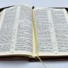 БИБЛИЯ 077 ZTI Оливковая ветвь, коричневая, золотой срез, индексы, молния, закладка /180х255/