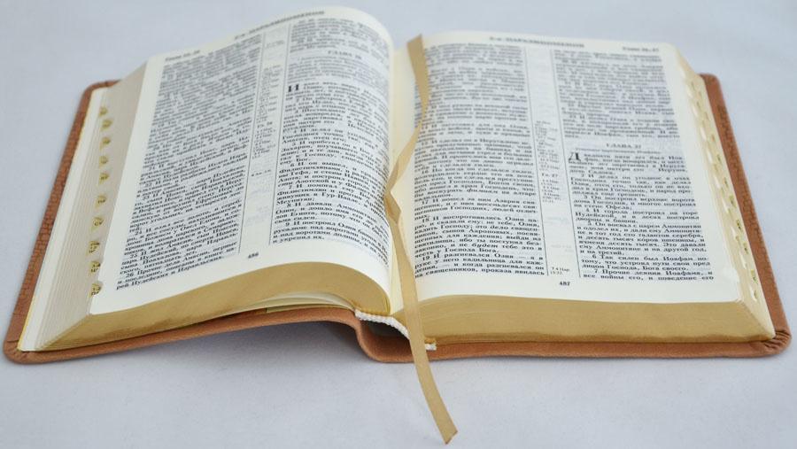 БИБЛИЯ 045 TI Коричневая, мозайка, индексы, золотой срез, словарь, закладка /175х120/