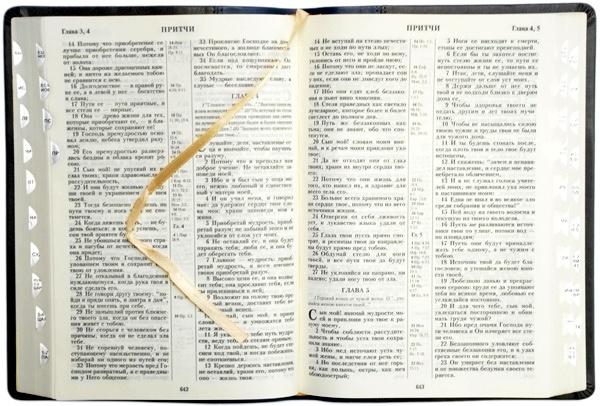 Библия 075 TI Сине-серая, футляр, орнамент, индексы, серебр. срез, кожа, закладки, словарь /170х240/