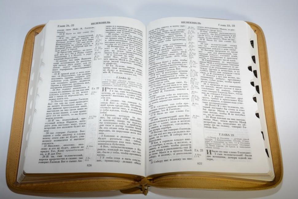 БИБЛИЯ 075 ZTI Терновый венец, светло-коричневая, термовинил, молния, золотой обрез, индексы, закладки /240х180/