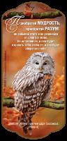 Магнит 7x15: Приобретай мудрость