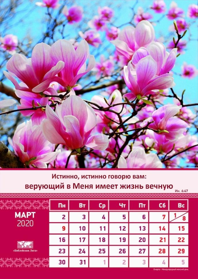 Перекидной календарь 2020: Общий (6 листов)